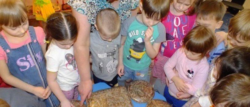 Тула для детей